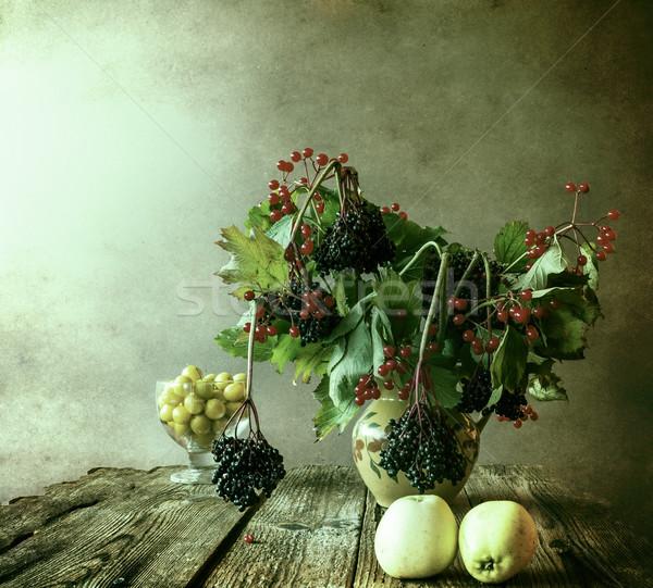Autumn bouquet Still Life sprigs elderberry Stock photo © fotoaloja