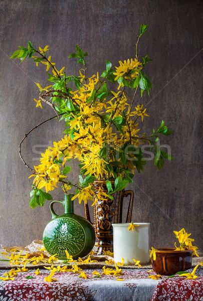 Still Life bouquet yellow forsythia spring Stock photo © fotoaloja