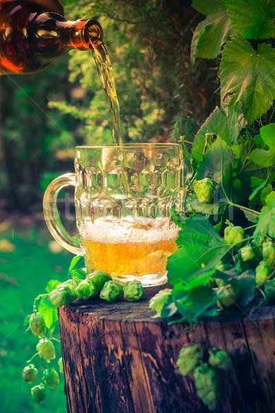 Foto stock: Cerveja · garrafa · beber · vida · ouro