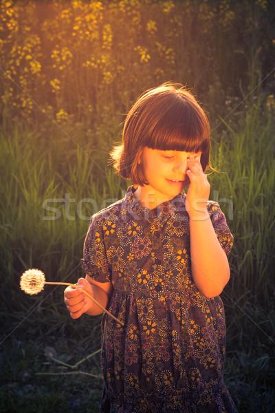 Bastante little girl leão campo flor Foto stock © fotoaloja