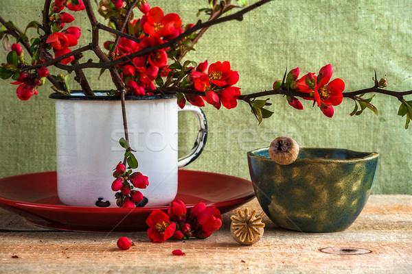 Still life bouquet barberry Stock photo © fotoaloja
