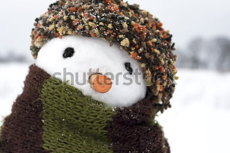 snowman Stock photo © fotoaloja