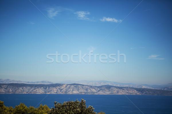 Zee zomer panorama Blauw bergen hemel Stockfoto © fotoduki