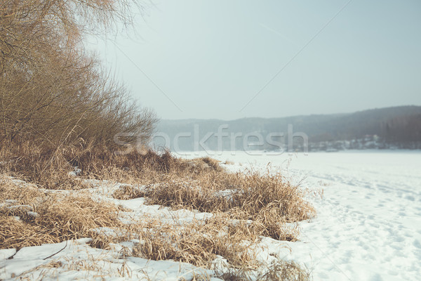 Winter landschap witte sneeuw lege hemel Stockfoto © fotoduki