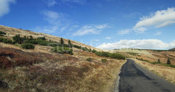Yaz dağ sahne yolculuk üst mavi gökyüzü Stok fotoğraf © fotoduki
