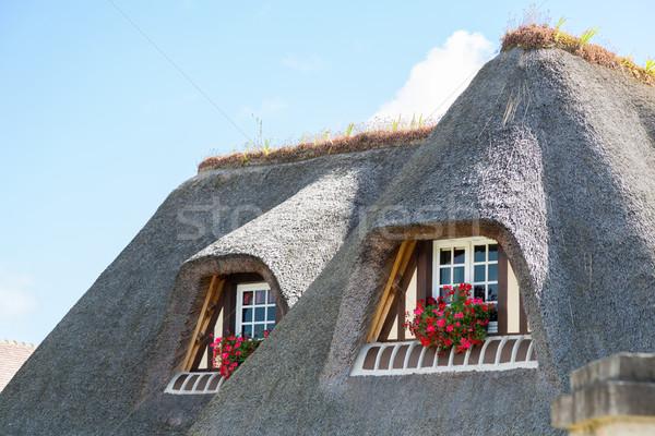 Typisch huis traditioneel decoratief bloemen rond Stockfoto © fotoedu