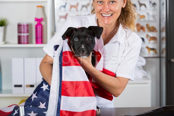 ветеринар собака американский ветеринар американский флаг улыбка Сток-фото © fotoedu