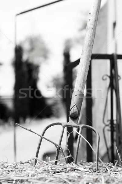 Gereblye leragasztott szalmaszál öreg kert kosár Stock fotó © fotoedu