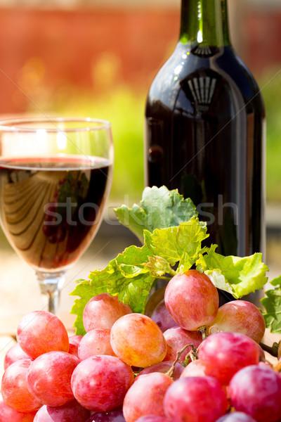 Wine grapes Stock photo © fotoedu
