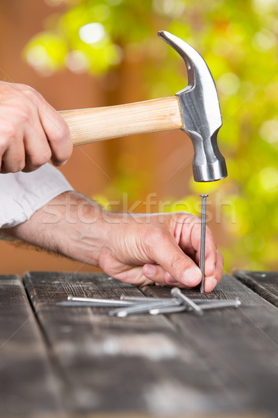 Carpenter nailing a nail Stock photo © fotoedu