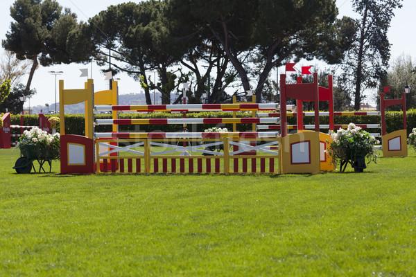 Raça competição cavalo mulher esportes Foto stock © fotoedu