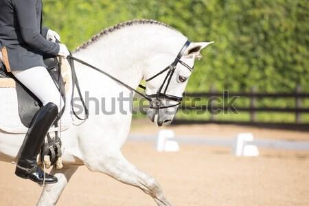 Hoogspringen concurrentie klaar vrouw sport Stockfoto © fotoedu