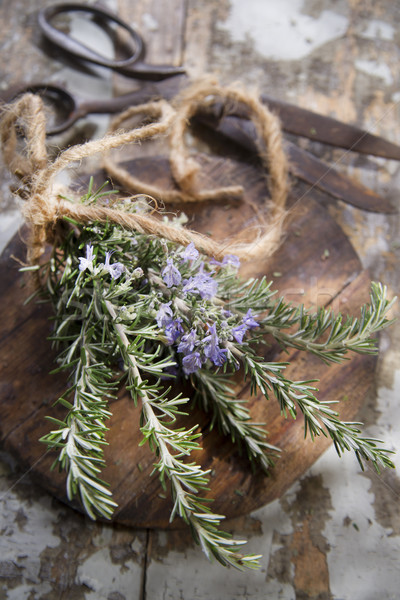 Sprigs of rosemary Stock photo © Fotografiche