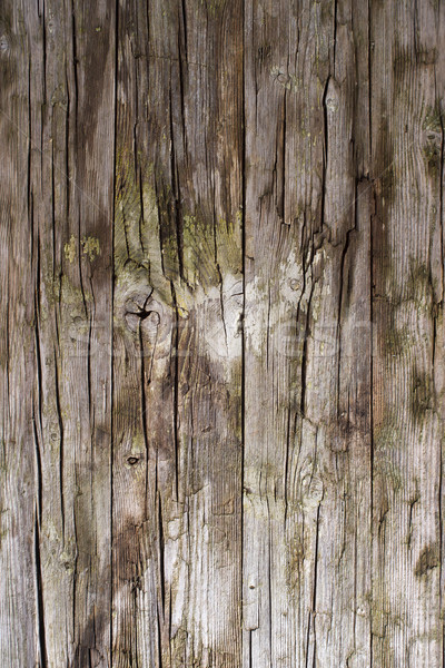 Old wooden boards Stock photo © Fotografiche
