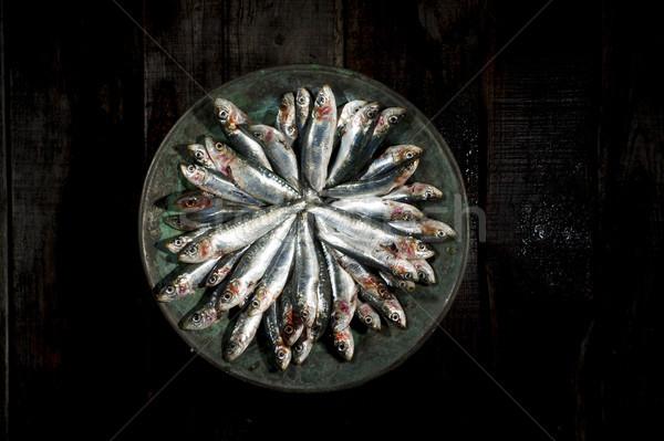 Crudo plato presentación porción cobre placa Foto stock © Fotografiche