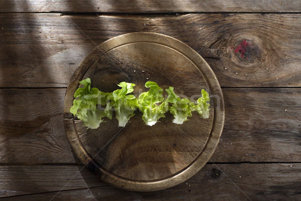 Plaka salata tanıtım taze yeşil garnitür Stok fotoğraf © Fotografiche