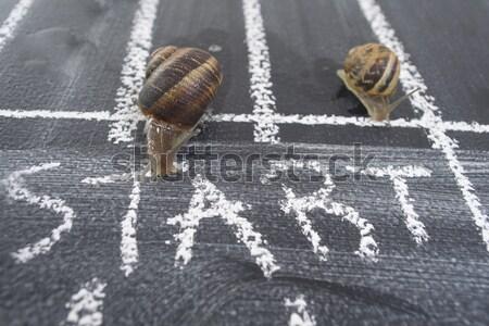 Spiral yavaş yolculuk günlük yol kullanılmış Stok fotoğraf © Fotografiche
