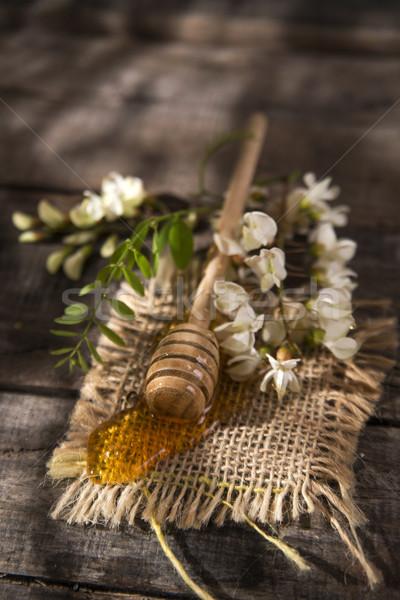 Acacia honey Stock photo © Fotografiche