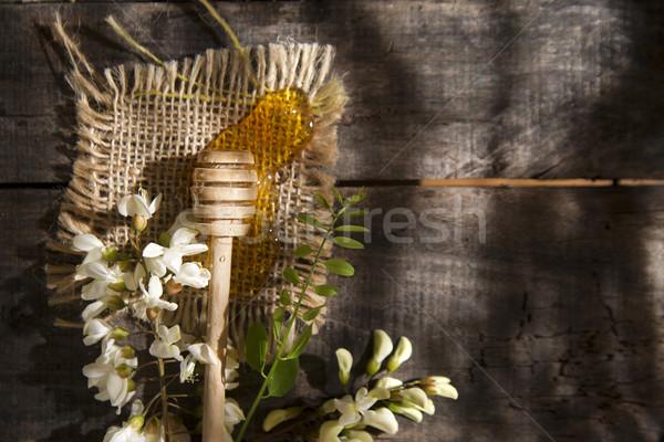 Honing presentatie klein bloem voorjaar Stockfoto © Fotografiche