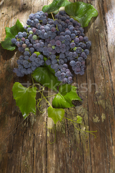 Preto uva morango tarde verão frutas Foto stock © Fotografiche