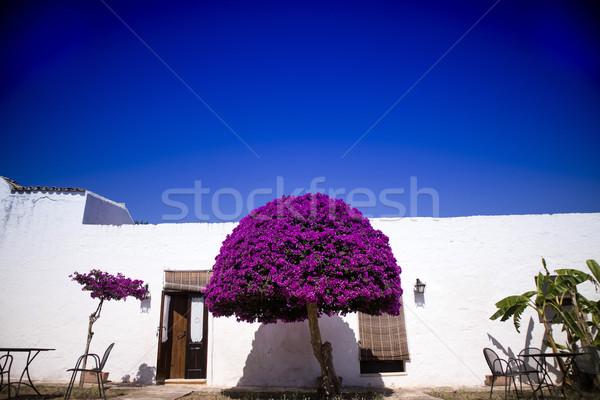 Particular arquitectónico típico construcción granja Trabajo Foto stock © Fotografiche