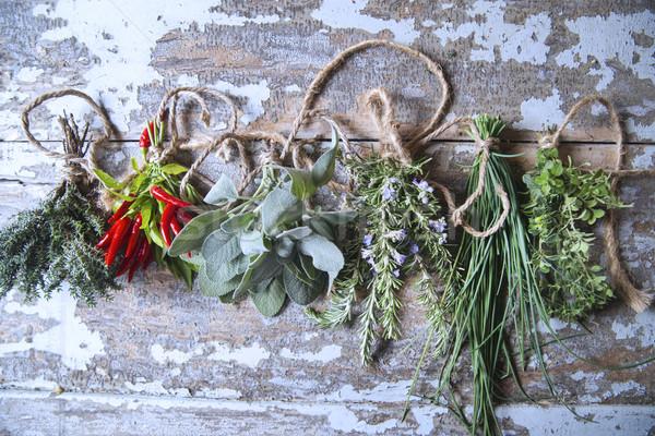 Mixed herbs Stock photo © Fotografiche