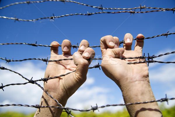 Manos alambre de púas agarrar signo ejecutar lejos Foto stock © Fotografiche