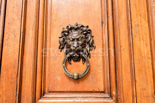 Wodden door with doorknocker Stock photo © fotoquique