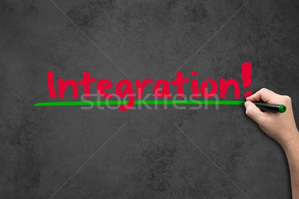 Integration on chalkboard Stock photo © fotoquique