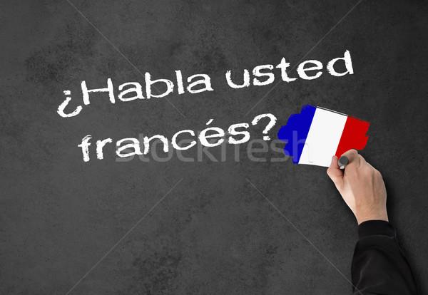 話す フランス語 ビジネスマン スペイン語 壁 オフィス ストックフォト © fotoquique