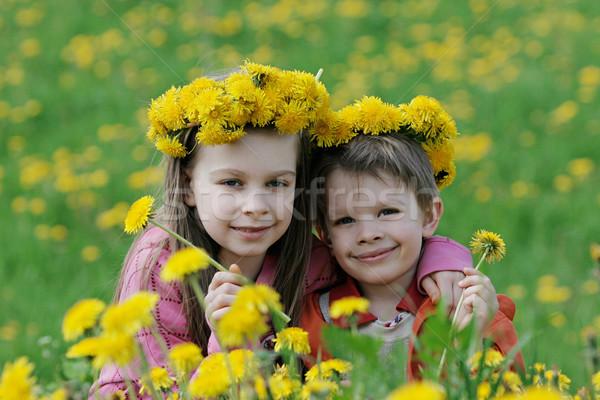 Stockfoto: Broer · zus · paardebloem · genieten · zomer · tijd