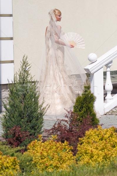 花嫁 庭園 美しい ブロンド ファン 壁 ストックフォト © fotorobs