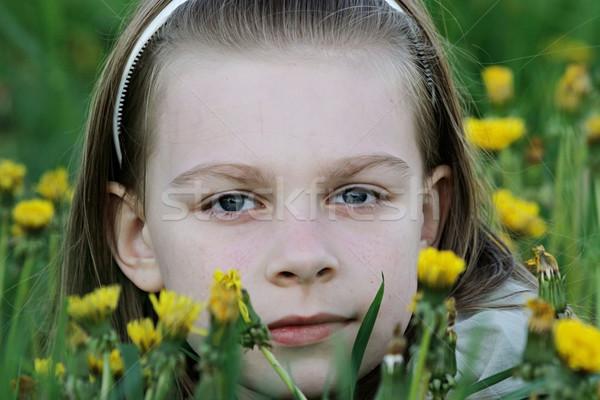 Portret jong meisje mooie paardebloem weide zomer Stockfoto © fotorobs