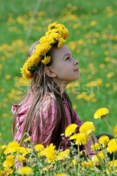 Młoda dziewczyna lata dzień nice cieszyć się czasu Zdjęcia stock © fotorobs
