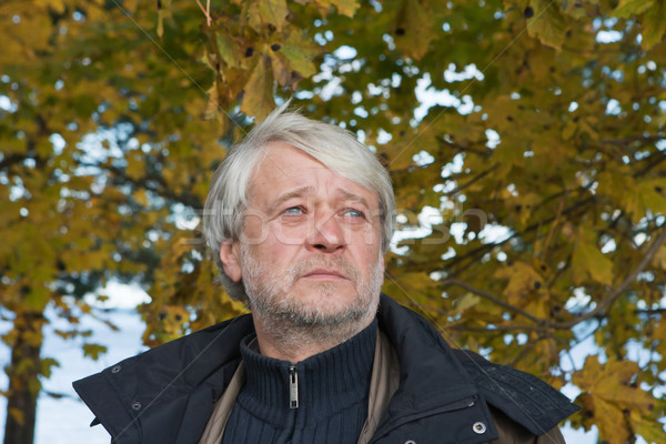 Portrait of middle-aged man in autumn day. Stock photo © fotorobs