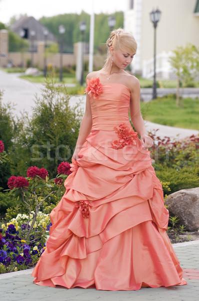 花嫁 下向き 美しい ブロンド クリーム 花 ストックフォト © fotorobs