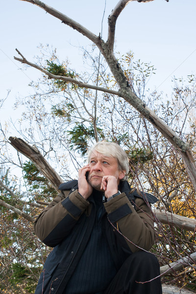 Mature middle-aged man in forest. Stock photo © fotorobs