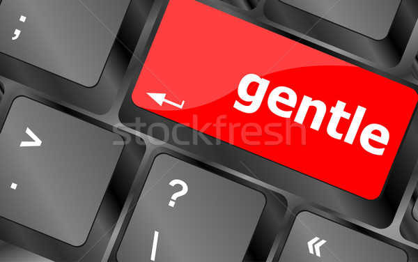 gentle button on computer pc keyboard key Stock photo © fotoscool