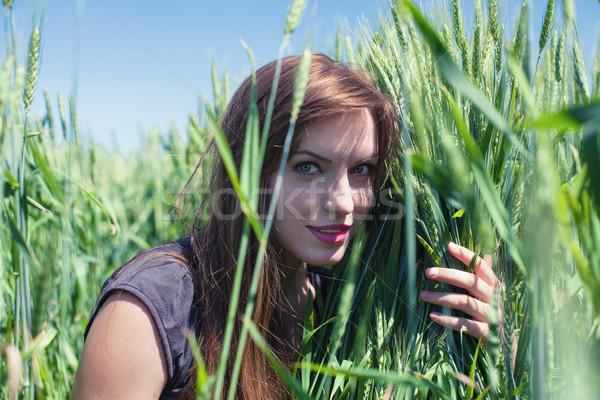 Сток-фото: девушки · пшеницы · красивая · девушка · женщину · небе · солнце