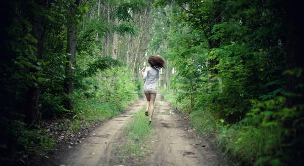 Stock fotó: Lány · erdő · fiatal · lány · út · fa · fa