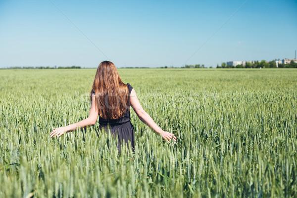 Girl in wheat Stock photo © FotoVika