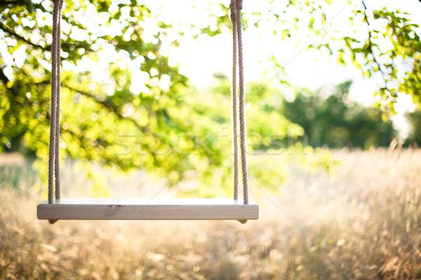 Swing Веревки большой дерево весны трава Сток-фото © FotoVika