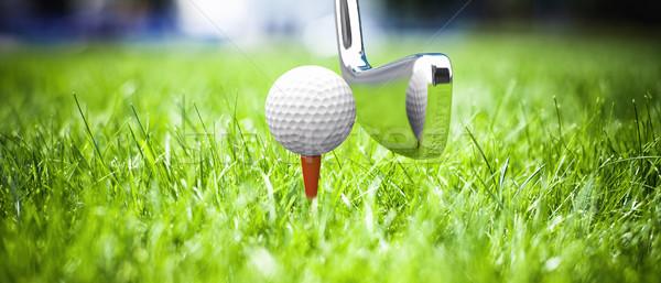 Spel golf mooie groen gras gras sport Stockfoto © FotoVika