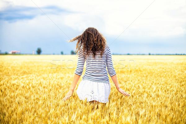 Stok fotoğraf: Kız · buğday · güzel · kız · kadın · gökyüzü · güneş