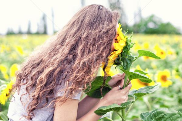 Menina girassóis beautiful girl amarelo girassol mulher Foto stock © FotoVika
