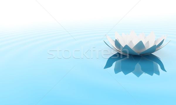 The flower Stock photo © FotoVika