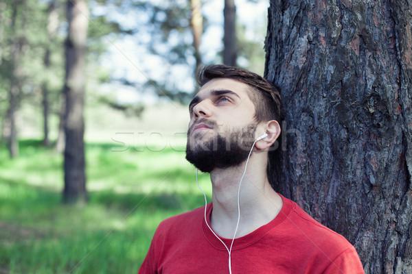 мальчика дерево музыку деревья лет зеленый Сток-фото © FotoVika