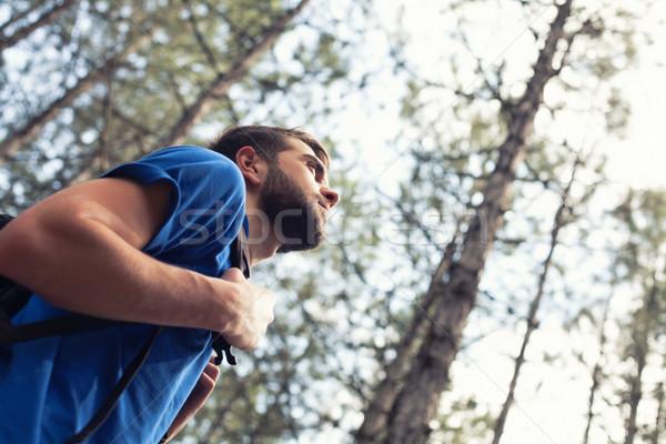 мальчика рюкзак стоять лес дерево Сток-фото © FotoVika