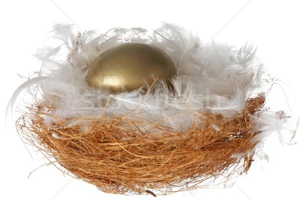 Branco ovo dourado ninho completo fofo Foto stock © fouroaks