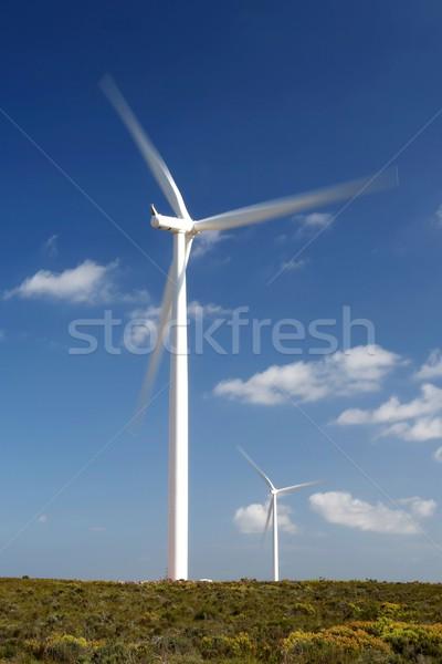 Elektromosság szélturbinák Dél-Afrika égbolt technológia kék Stock fotó © fouroaks